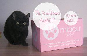Miaou Box